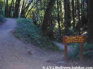 Hiking Joaquin Miller Park