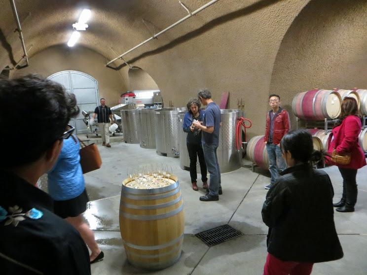 vineyard4
