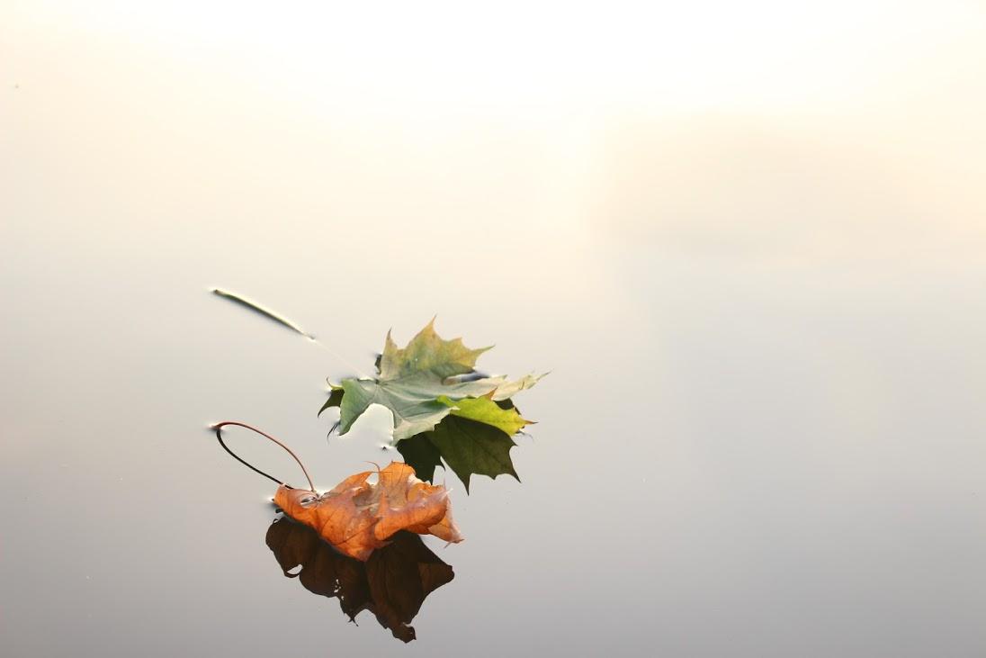 Self Help: Floatation