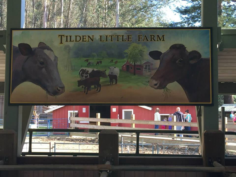 tilden little farm1