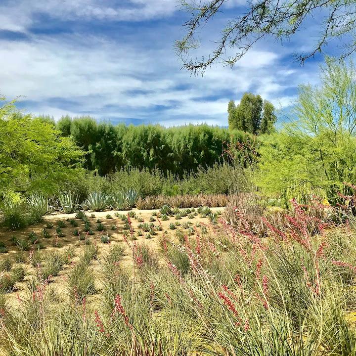 Sunnylands Center & Gardens, Palm Springs