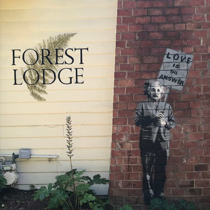 carmel forest lodge