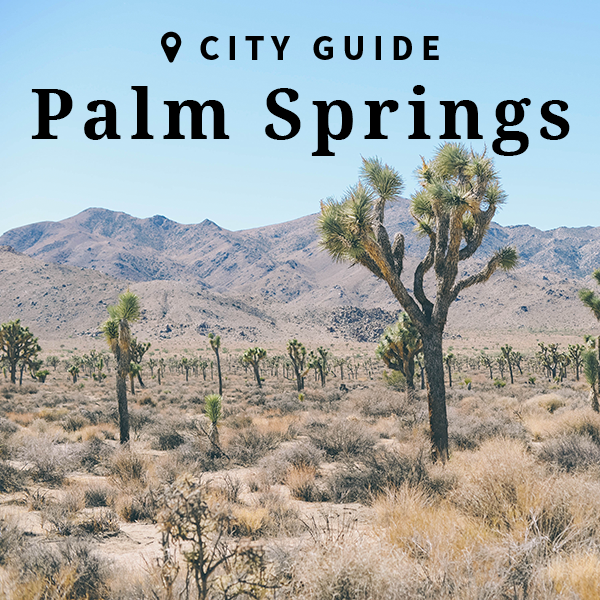 Updated Palm Springs Guide