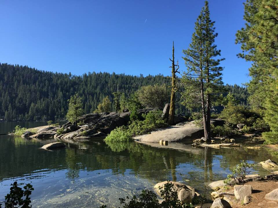 pinecrest california